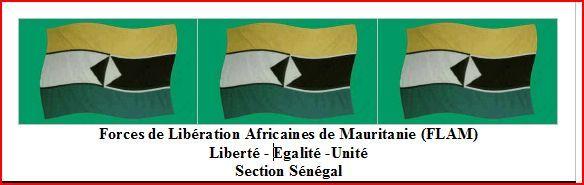 Communiqué de presse: La Section Sénégalaise des FLAM rejette les décisions prises à Nouakchott