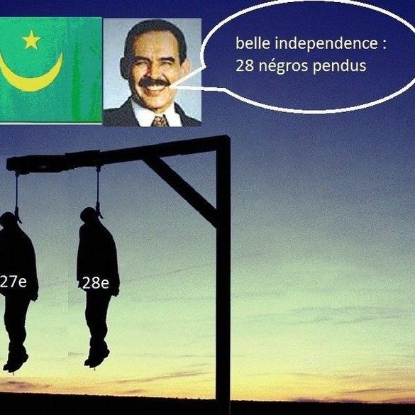 PILE OU FACE : 28 Novembre prochain, une fête de l'Indépendance pas comme les autres