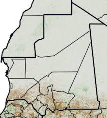 Mauritanie: Hausse de plus de 40% des prix des aliments de bétail