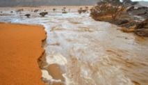 Pluviométrie : importantes précipitations dans 7 wilayas du pays