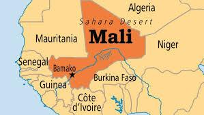 Présidentielle malienne : des recours devant la Cour constitutionnelle