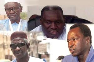 Mauritanie /présidentielle : les partis négro-mauritaniens à l'assaut