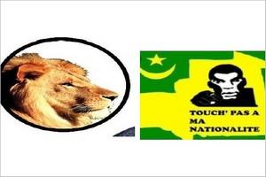 Communiqué conjoint direction de la campagne du candidat Biram Dah Abeid et TPN