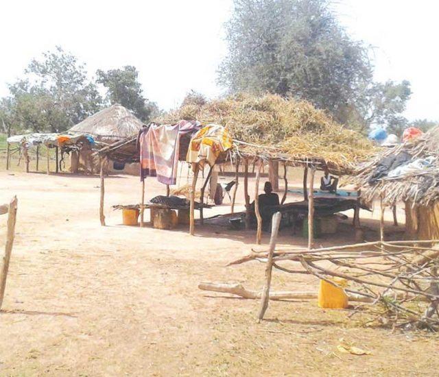 Mauritanie : les réfugiés réactivent la demande de leur retour